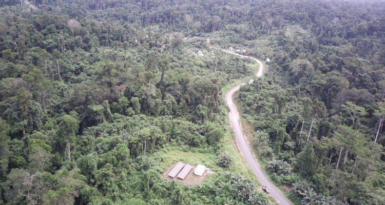 Ilustrasi Desa di Papua
