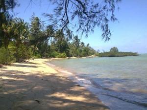pulau ngenang